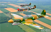 P-40 Warhawk Poster Vertical Formation 14x20